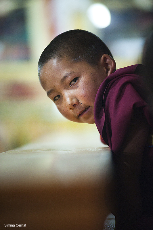 Young Buddhist monk in Ladakh, India